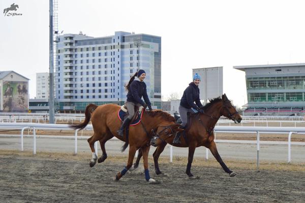 Бикметова_веселые кони_1