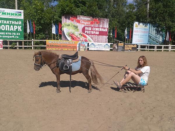 Матвеева_готовь сани летом_1