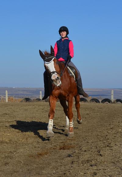Тропина_большепризная лошадь на пенсии_1