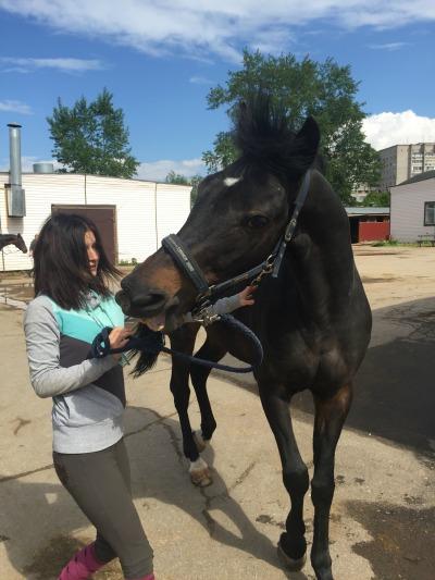 Погонова_голодный конь_1